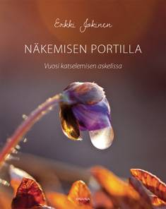 Näkemisen portilla