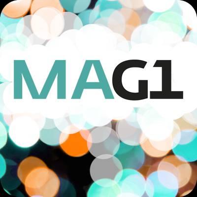 Otavas matematik MAG1 digibok 6 mån ONL
