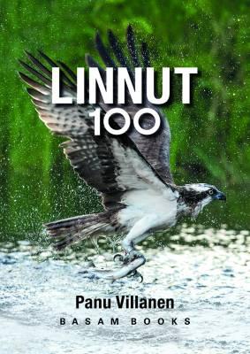 LINNUT 100