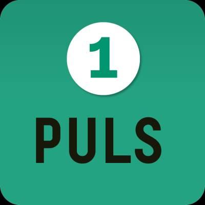 Puls 1 digibok 48 mån ONL