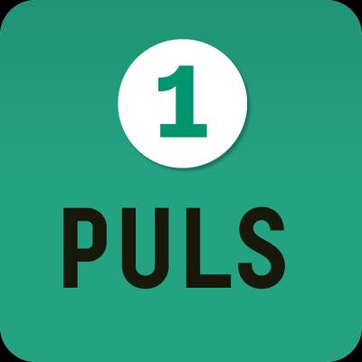 Puls 1 digibok 6 mån ONL